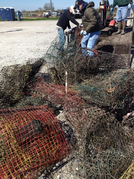 Crab Trap Marine Debris