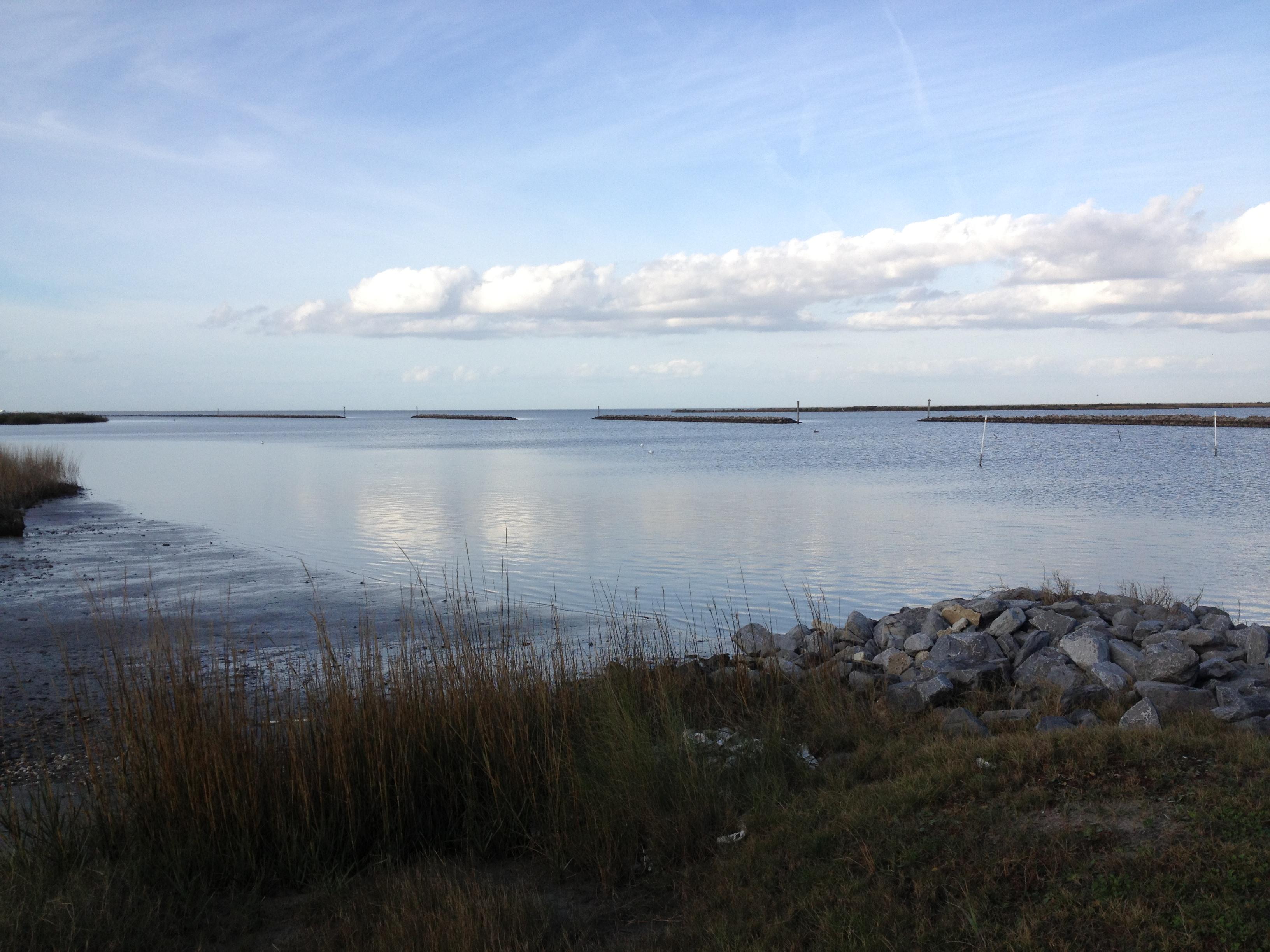 Fee increase louisiana lagniappe for Louisiana saltwater fishing license